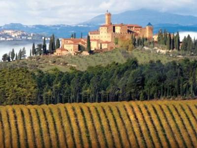 Brunello winery
